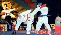 masTaekwondo_Karate