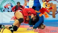 masTaekwondo_Sambo