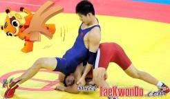 masTaekwondo_Wrestling