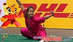 masTaekwondo_Wushu