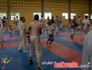 2010-09-10_(15887)x_masTaekwondo_Taekwondo-Galicie-en DOM_600_05