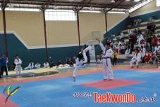 2010-10-07_masTaekwondo_Chimborazo-2010_Ecuador_600_07