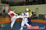 2010-10-09_(17210)x_masTaekwondo_Brasil-Chile9