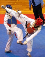 2010-11-30_masTaekwondo_Copa-Chile_300_07