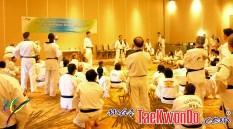 2011-02-16_(21882)x_masTaekwondo_Curso-IR-Poomsae_Austin_03