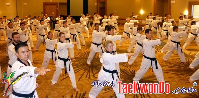 2011-02-16_(21882)x_masTaekwondo_Curso-IR-Poomsae_Austin_05