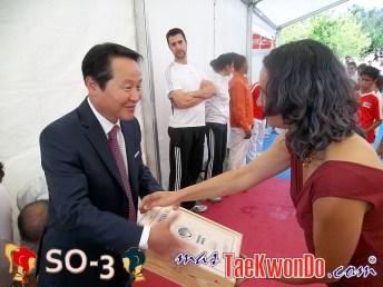 2011-07-10_Taekwondo_SO-3_Dia-6_07