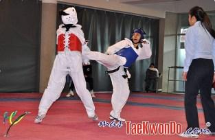 2011-08-30_(31156)x_Selectivo-Taekwondo-Chile_2011_07