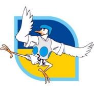 2011-09-24_(31699)x_European_Master_Games_2011_taekwondo