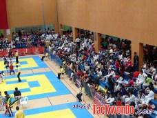 2011-11-07_(32929)x_Festival Mundial de Taekwondo_05