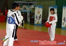 2012-06-01_(39983)x_Combate
