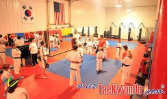 2013-06-05_(60584)x_FS-Primus-Taekwondo_04