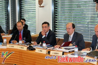 2013-06-07_WTF-Council-Meeting_21