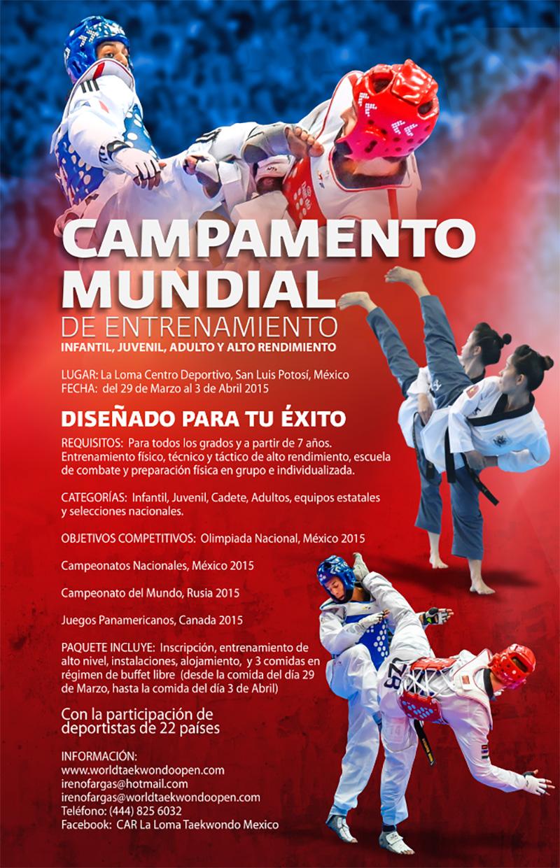 Poster, Campamento Mundial, La Loma 2015
