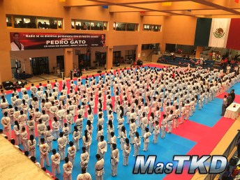 20170418x_Campamento-y-Open-Mundial_Taekwondo_La-Loma_12