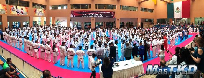 20170418x_Campamento-y-Open-Mundial_Taekwondo_La-Loma_13