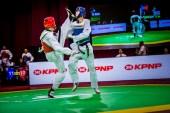 World-Taekwondo-GP-Moscow-2018_Day-1-Morning-9