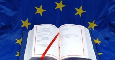 ევროპა ჩემს გაკვეთილზე, ანუ ევროპა როგორც სამოდელო გაკვეთილი