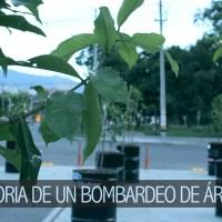 Historia de un bombardeo de árboles Todo comienza…
