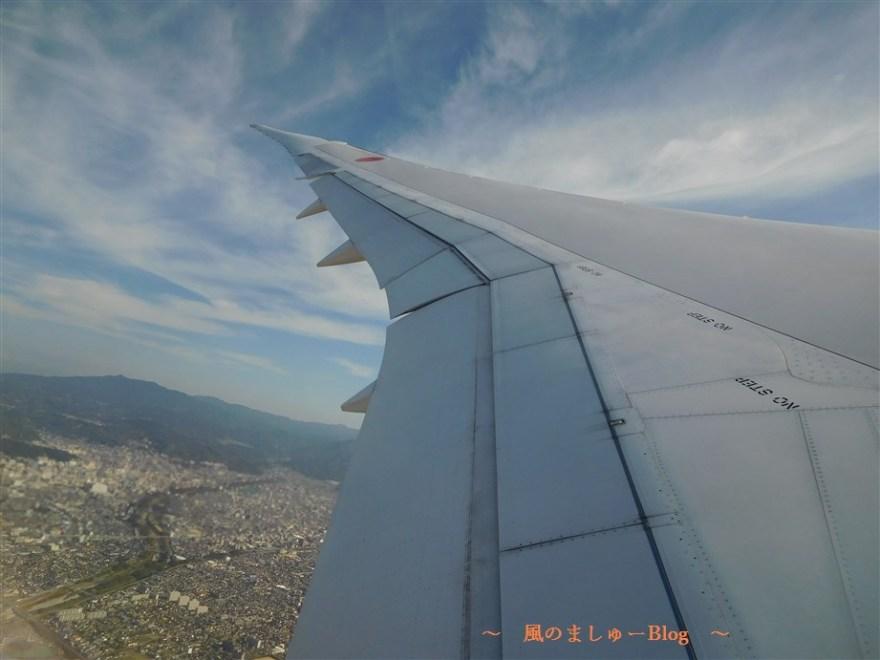 飛行機 翼