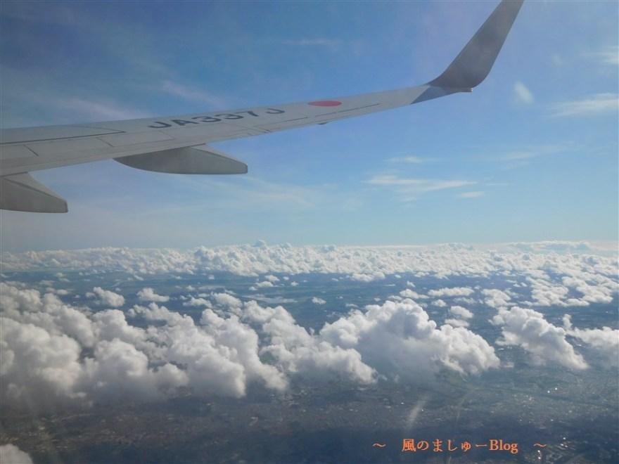 飛行機 写真