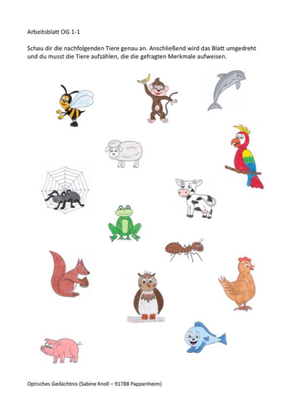 Tiere nach Merkmalen  Sprache  madoonet