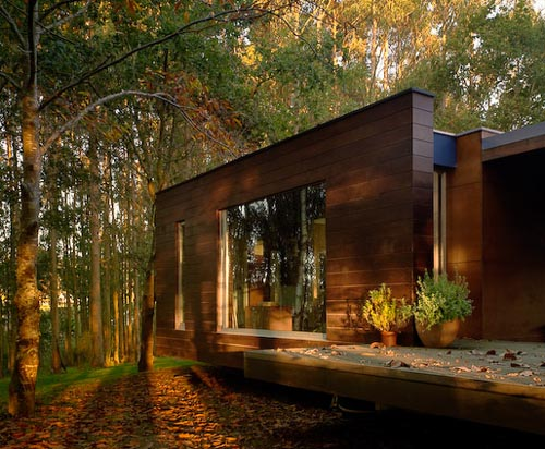 Spectacular Forest House designed by Crecente Rosales