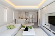 Modern Living Room and Kitchen Designs