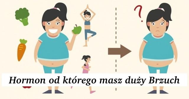 Hormon od którego masz duży Brzuch – Nowy Artykuł