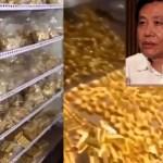 Mantan Wali Kota Korupsi, Ditemukan 13,5 Ton Emas dan Uang Rp 525 T