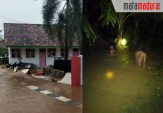 Sumenep DikepungBanjir