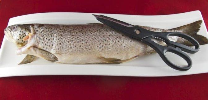 Rakfisk fra Jotunheimen
