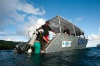 Scuba Diving at Matava in Kadavu, Fiji