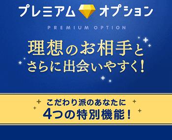 アプリタップル誕生のプレミアムオプション購入画面