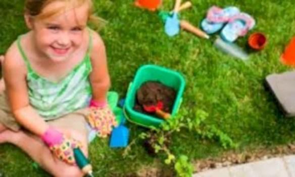 Amazing kid science's lab garden 08