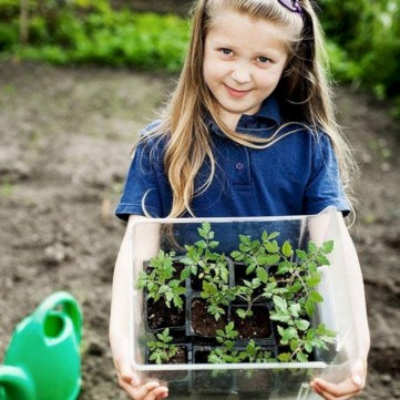 Amazing kid science's lab garden 14