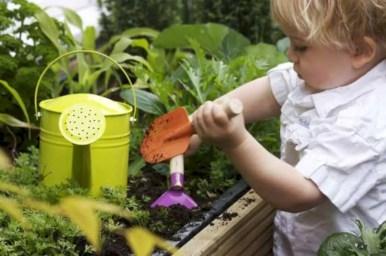 Amazing kid science's lab garden 20