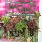 Charming outdoor hanging planters ideas to brighten your yard 27