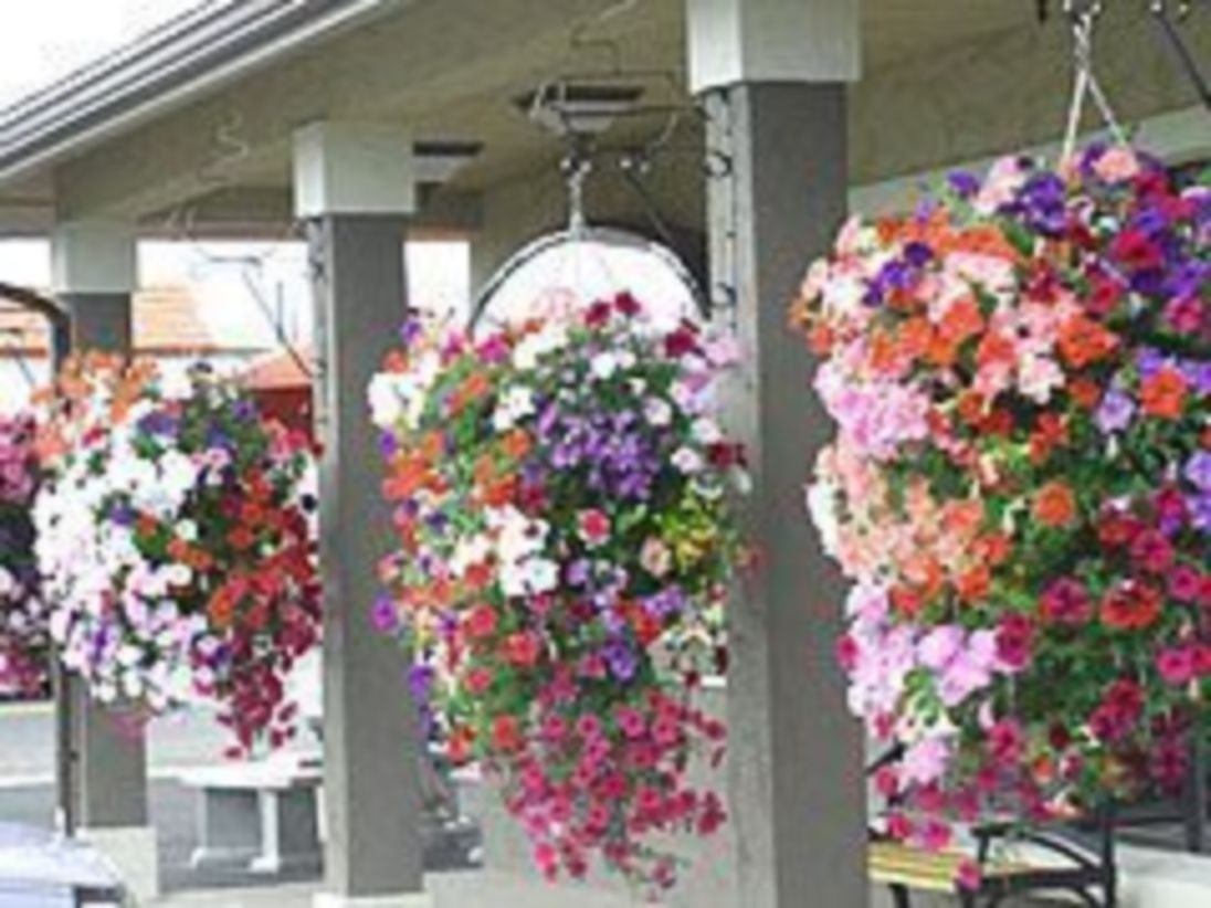 Charming outdoor hanging planters ideas to brighten your yard 28