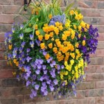 Charming outdoor hanging planters ideas to brighten your yard 31