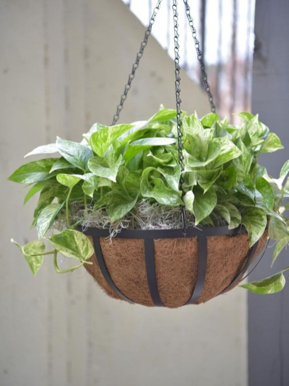 Charming outdoor hanging planters ideas to brighten your yard 32
