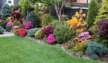 Colorful-garden-flower-bed-for-your-front-yard-landscape