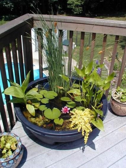 Creative garden potting ideas 03