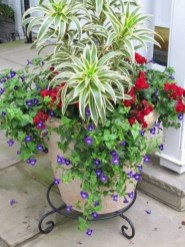 Creative garden potting ideas 35