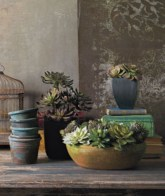Faux cactus and succulent projects and ideas to decorate your home 14