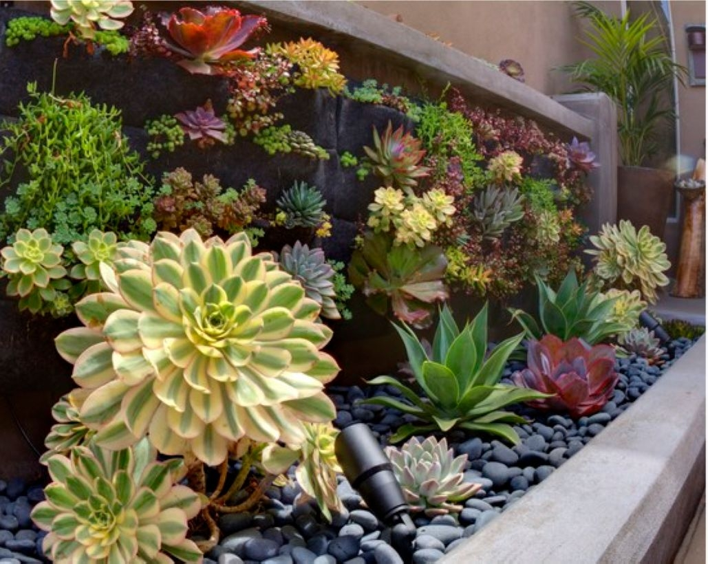 Faux cactus and succulent projects and ideas to decorate your home 19