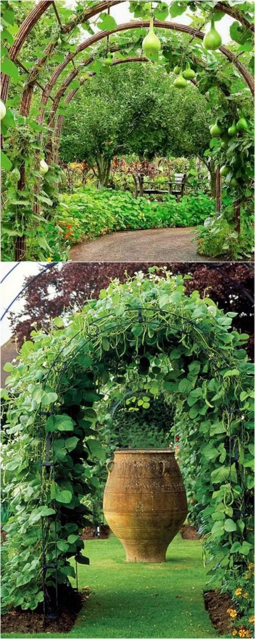 Diy friendly trellis and garden structures