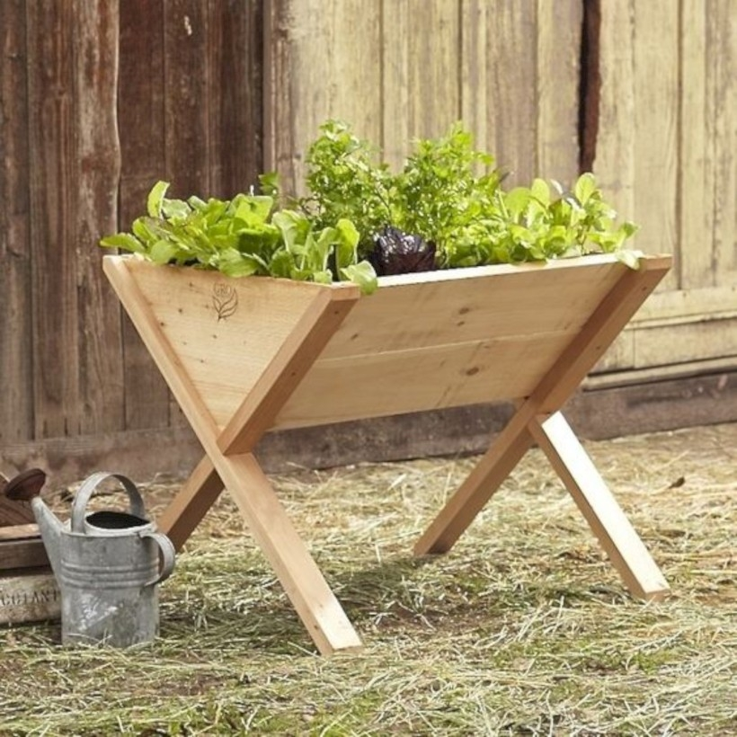 Wooden veg-wedge raised bed to grow herbs and cherry tomatoes