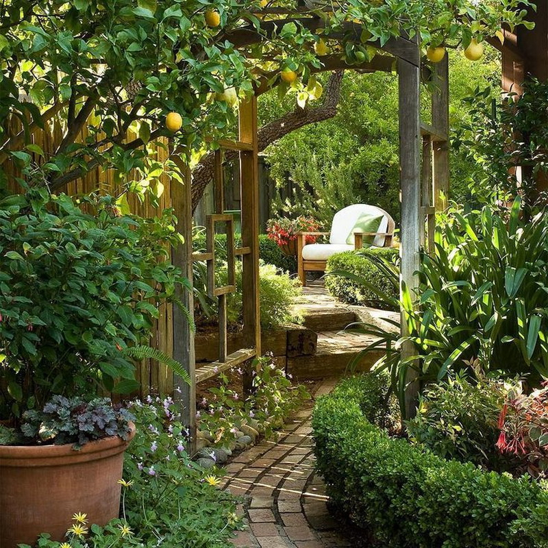 Small Garden Secrets: Best Secret Garden Ideas That Will Make Everyone Envy You