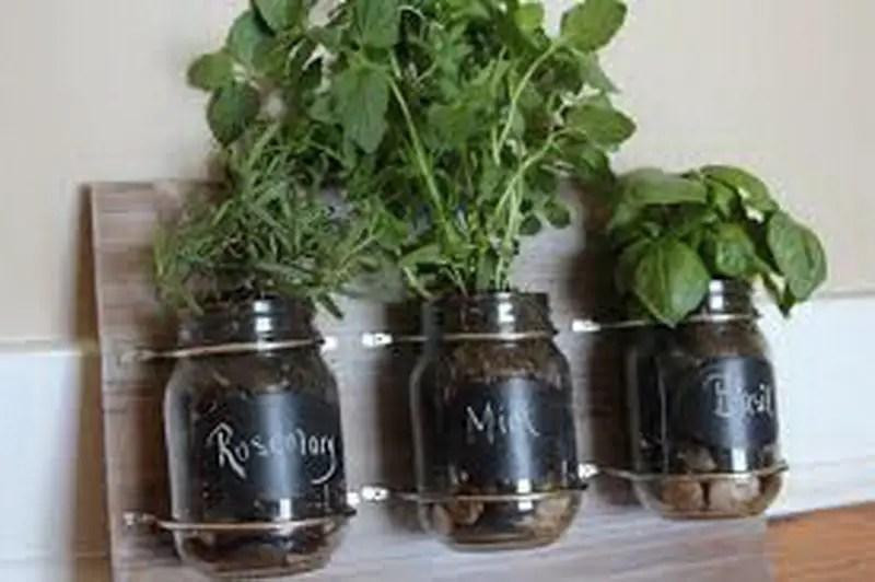 5. rosemarry